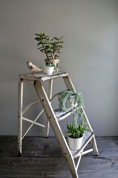 Use a ladder as a plant stand