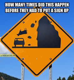 Beware of the falling cows...
