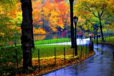 Autumn in New York - nostalgic. I love the New York in the Fall.