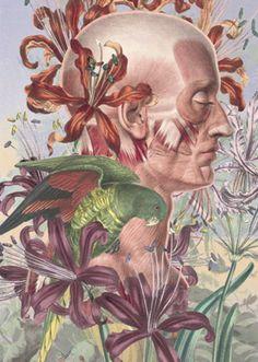 Juan Gatti #Ciencias Naturales