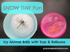 Pink and Green Mama: Snow Day Play: Make Ice Animal Balls with Balloons and Water.