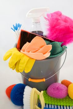 Google Image Result for http://pacorenovation.com/App_Themes/Gray/Images/TreeNodeHouseCleaning.jpg