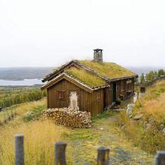 Hytte Valdres Sprossa Else Rønnevig=