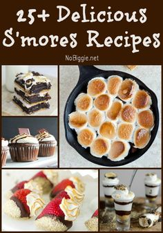25+ Delicious Smores Recipes | NoBiggie.net
