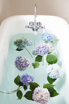 Hydrangea tip -   Cut the stems on an angle under very hot water. Put them in hot water in the vase. Repeat when they begin to wilt. They will last 10-14 days this way. baths, floating candles, bathtub, bathing beauties, country farmhouse, flowers, hall bath, bath time, hydrangeas
