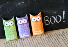 Owl Wrappers
