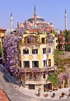 The wisteria-covered Empress Zoe Hotel, which practically sits in the shadow of Hagia Sophia.