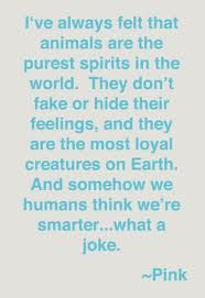 Pure spirits! #Animals #Quotes #Pink