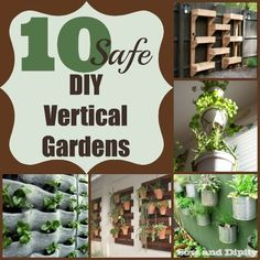 Choose safe methods for growing veggies vertically, here are some great ideas and things to consider.