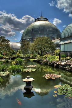 DETROIT'S Belle Isle Conservatory. Yes, it is really this lovely. There are places to sit where you can just watch the fish. A real gem that belongs to DETROITERS.