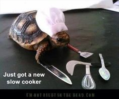 Slow Cooker!