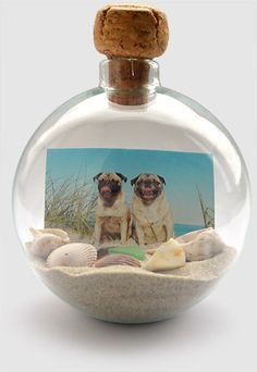 Beach Photo Globe - gather sand and small shells to combine with a photo for display that brings the beach home with you.  Print the photos at Kodak Picture Kiosk. #photo #DIY #craft #project #beach