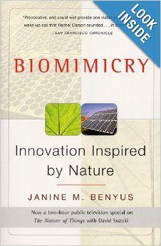 essay on biomimicry
