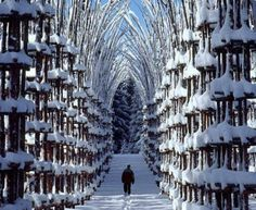 Snow Cathedral in Norway