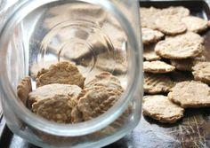 diy doggie biscuits