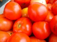 How to grow tomatoes in the heat of the south.
