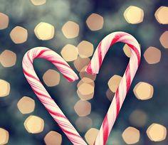 Christmas christmas cards, christmas photography, christmas pictures, christmas tree ideas, winter photography, christmas candy, candi cane, candy canes, cane heart
