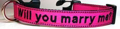 collar monogram, fluffi puppi, pug puppies, dog collars, dreams, collar marri, wedding dogs, fluffy puppies, dog proposal
