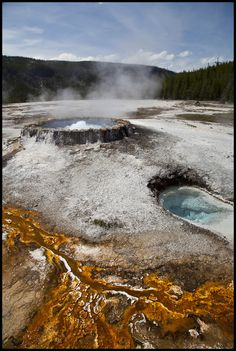 Geyser - Yellowstone National Park - Wyoming, USA