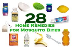 home remedies, idea, remedies for mosquito bites, trick, health, homes, diy, mosquitoes, best mosquito bite remedy