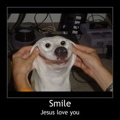 Jesus loves me this i know, for the puppy tells me so!!!!!!!