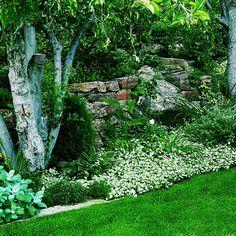 garden retain, shade garden, backyard walls