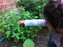 kiddie gardening activities