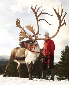 Those antlers! Unbelievable!