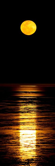 """""""Stairway To The Moon"""", Cable Beach, Broome, North Western Australia"""