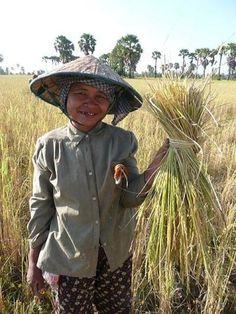 Cambodia-Worker