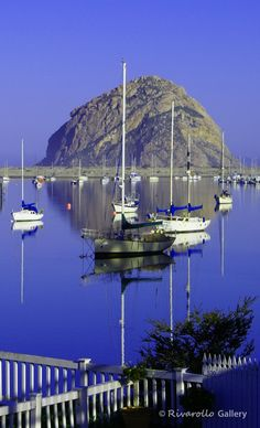 Morro Bay, CA. USA~ Beautiful!! When you stay at any hotel just blocks away, you can hear the sea lions in the Bay day & night~ it's a riot!