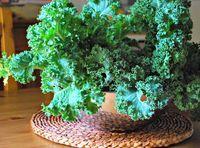 9 Tips for Making Kale Salad (Recipe: Kale Super Salad) (Family Bites)