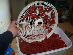 Dehydrating Way Beyond Jerky: Tomato Skins - Don't Toss 'Em !