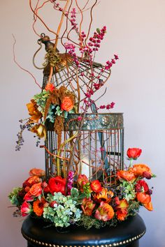 Centerpieces - Birdcage for LoveBird Theme, is it appropriate? :  wedding centerpieces lovebirds IMG 7953
