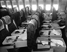 """Babies strapped in seats in 747 Jumbo jet enroute Clark AB to LAX. Photo: Robert Stinnett / Oakland Tribune, April 12, 1975.    This was part of the orphan airlift, called """"Operation Babylift"""" from Vietnam to the US that took place in 1975, primarily by World Airways.    Via The Oakland Tribune Collection, the Oakland Museum of California"""