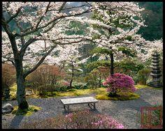 Hakuryuen GREAT GARDENS OF KYOTO #kyoto #Japan