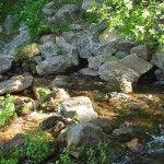 Headwaters at the Mt Shasta City Park, Mt. Shasta, California, USA