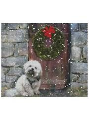 Lhasa Apso in the Snow Cross-Stitch
