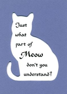 Just what part of Meow don't you understand?