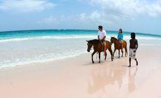 Caribbean-Horseback-riding