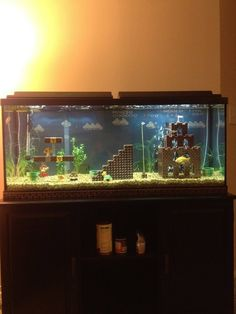 Super Mario Bros Fish Tank // I want to do this but for octopodes and Minecraft! Does give me the idea that chinchillas would love a chinchilla's only room that's like this! -pixypi