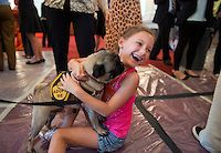 "July 30, 2013: Iris Zola, 9, greets ""Kanye,"" a pug, during an American Society for the Prevention of Cruelty to Animals and the Congressional Animal Protection Caucus event in Cannon Building. The second annual ""Paws for Celebration!"" was held to bring attention to animals up for adoption and recognize the work of rescue organizations. (Photo By Tom Williams/CQ Roll Call)"