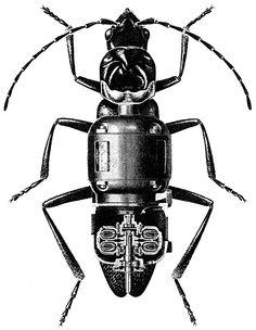 Nicolas Lampert, Machine-Ant