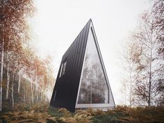http://mmminimal.com/the-allandale-house-a-cabin-of-curiosities/