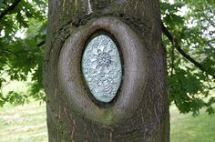 Lovely urban ceramic jewelry for trees, by artist NeSpoon in Poland.