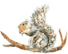 Woodland nursery boy nursery art squirrel by LightheartedDreamer