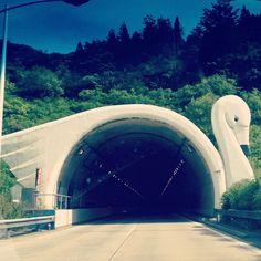 Swan tunnel in japan