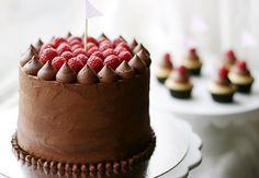 Delicious Chocolate Cake & Fresh Raspberries