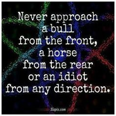 Never approach a bull from the front, a horse from the rear or an idiot from any direction.