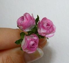 How to: Miniature roses.